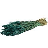 Spice grau verde petrol vopsite