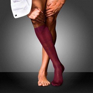 Ciorapi pana la genunchi FALKE No. 10 barolo